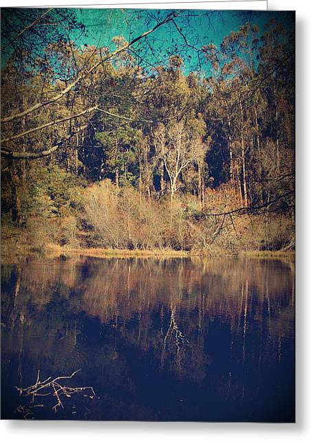 Winter Jewel Greeting Card by Laurie Search