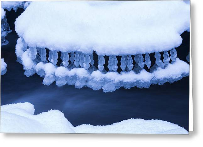 Winter Jewelry Greeting Card by Mircea Costina Photography