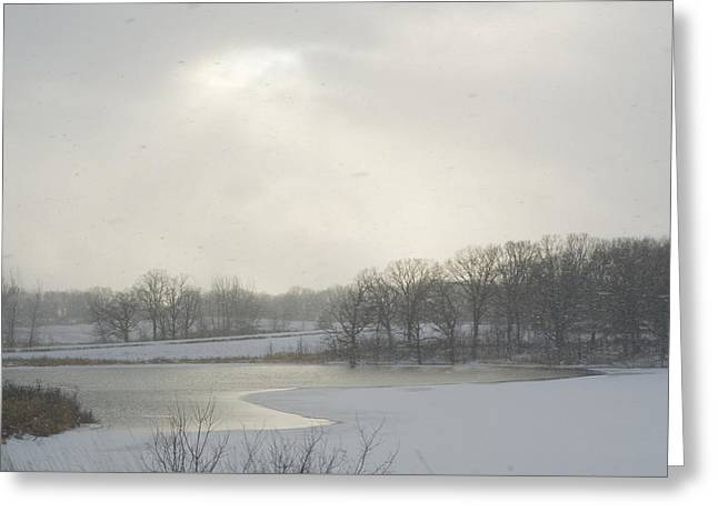 Winter Lake And Forest Greeting Card