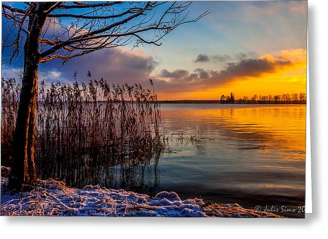 Winter Lake Sunset With A Tree Lighted In Red And Orange  Greeting Card