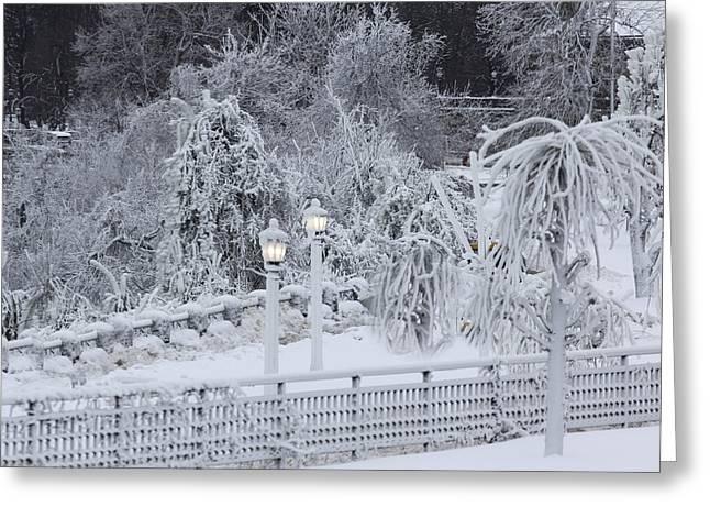 Winter Land Greeting Card