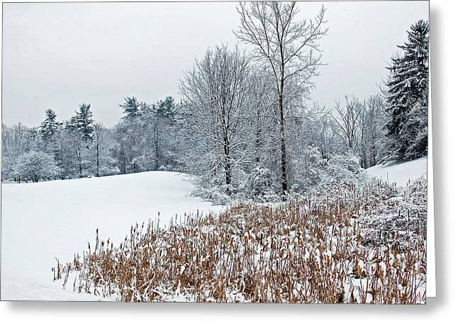 Winter Landscape Greeting Card by Aimee L Maher Photography and Art Visit ALMGallerydotcom
