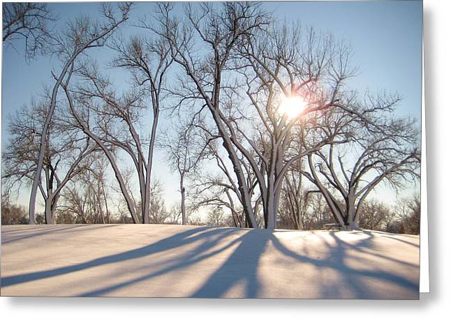Greeting Card featuring the photograph Winter Landscape by Alicia Knust