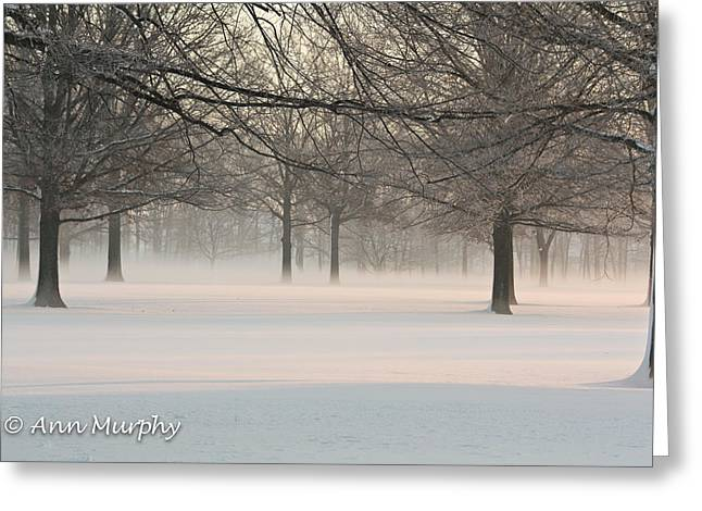 Greeting Card featuring the photograph Winter Landscape by Ann Murphy