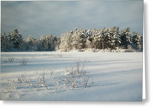 Greeting Card featuring the photograph Winter Landscape At Mud Lake Ottawa by Rob Huntley