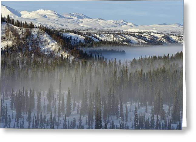 Winter Landscape Greeting Card by Christian Heeb
