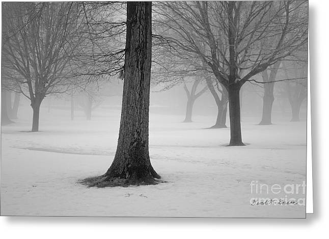 Winter Landscape II Greeting Card