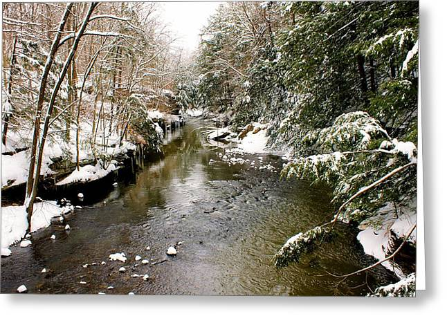 Greeting Card featuring the photograph Winter Landscape by Michelle Joseph-Long