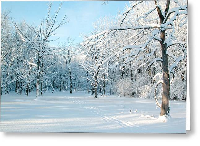 Winter Landscape Ottawa Greeting Card