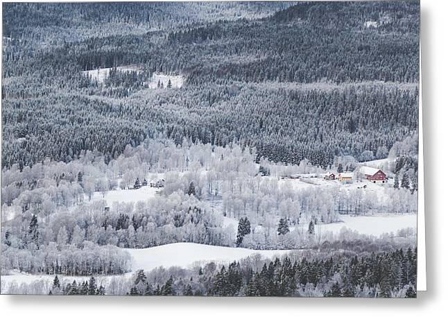 Winter Landscape View From Above On Winter Forest Under Snow Greeting Card