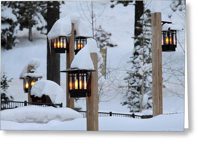 Winter Light Greeting Card by Denice Breaux