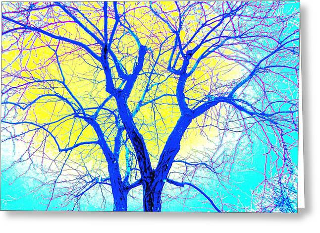 Winter Marriage Of Two Trees Greeting Card by Ann Johndro-Collins