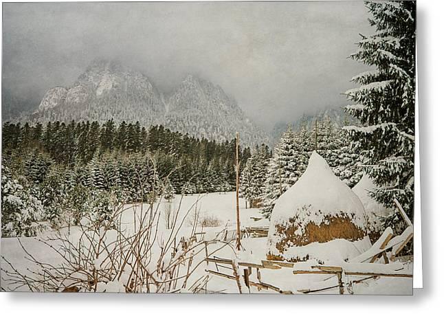 Winter Mood Greeting Card by Cristina-Velina Ion