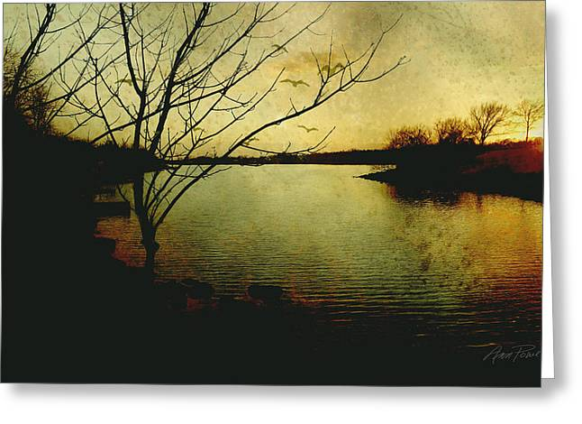 Winter Moody Sunset  Greeting Card by Ann Powell