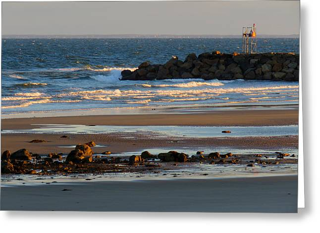 Winter Morning At Sesuit Harbor Greeting Card by Dianne Cowen