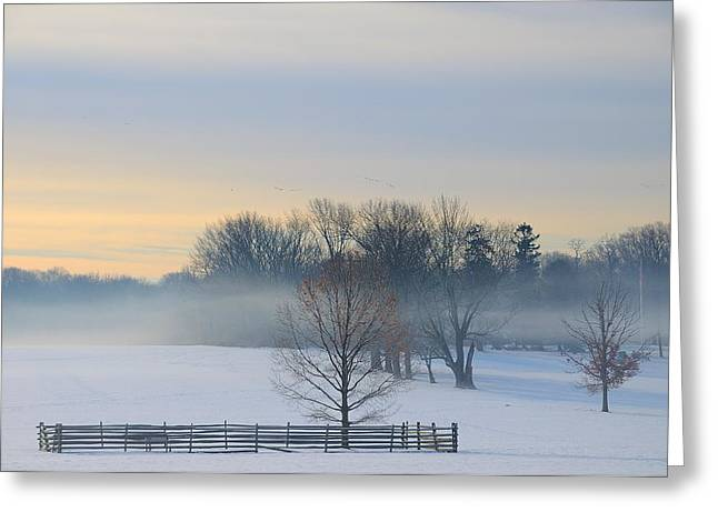 Winter Morning Fog Greeting Card by Steven Richman