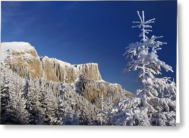 Winter Mountain Landscape Greeting Card by Ioan Panaite