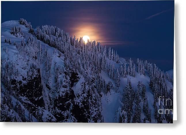 Winter Mountain Moonrise Greeting Card by Mike Reid
