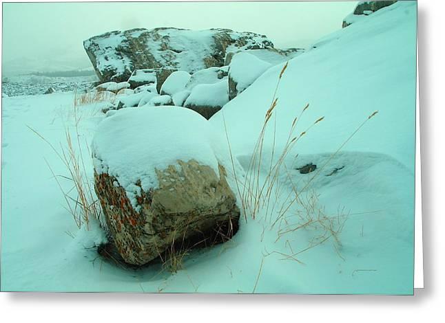 Winter Near Frank Slide Alberta Greeting Card by Jeff Swan