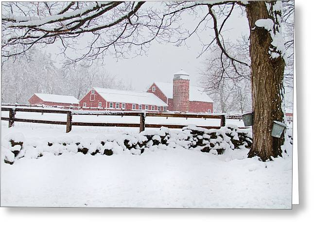 Winter New England Farm Greeting Card