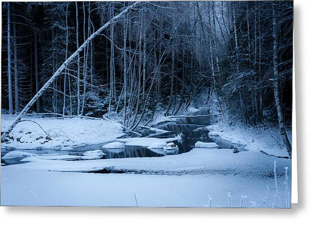 Winter Night At The River Greeting Card