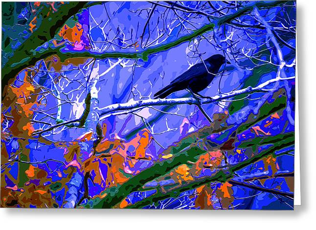 Winter Night Roost Greeting Card