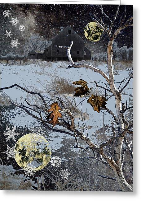 Winter Nights Greeting Card by Donna Lee Young