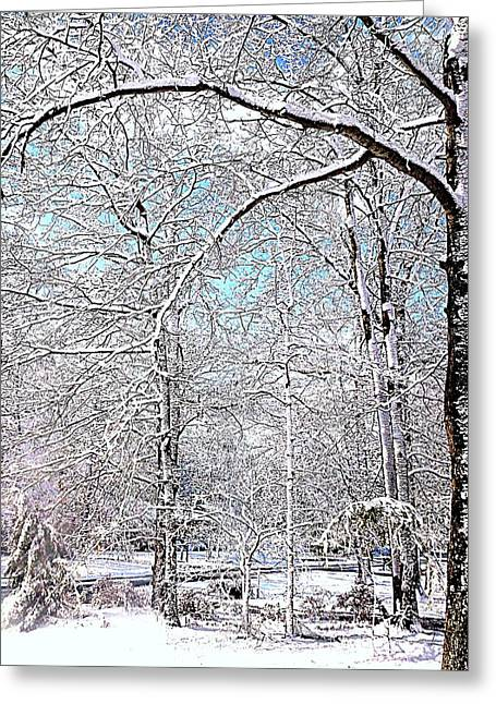 Winter On A Spring Day Greeting Card