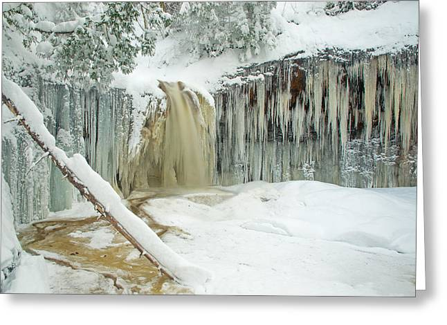 Winter On Carpenter Creek Greeting Card