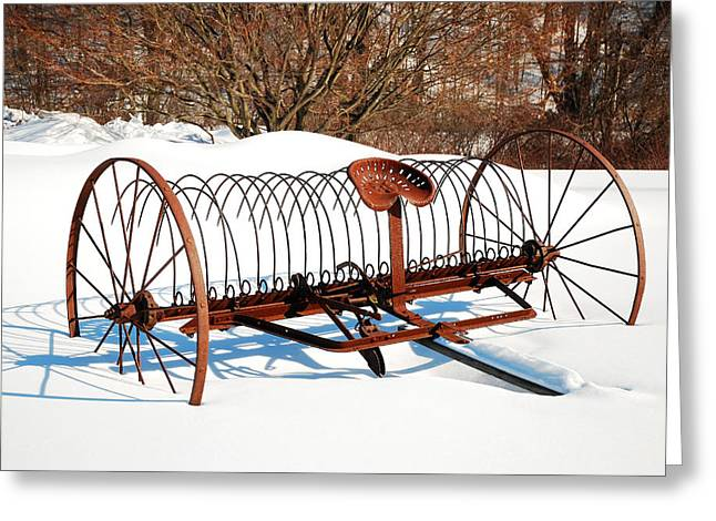 Greeting Card featuring the photograph Winter On The Farm by James Kirkikis