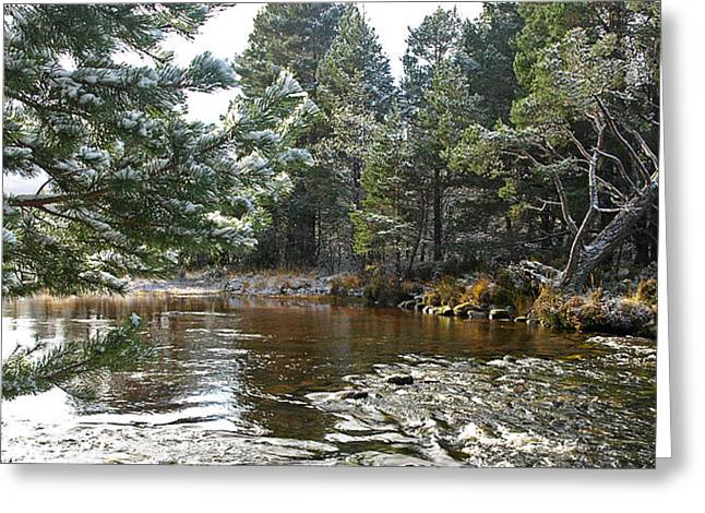 Winter On The Loch Near Aviemore Greeting Card