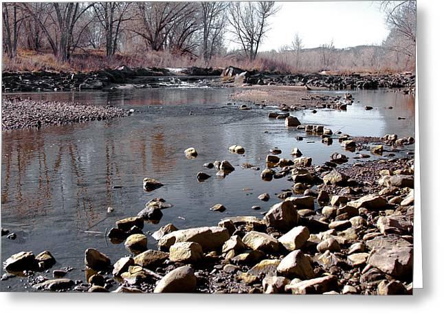 Winter On The South Platte River - Denver Colorado Greeting Card