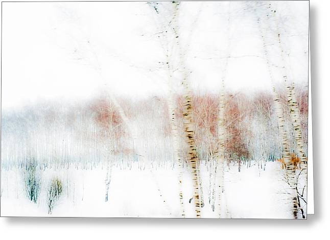 Winter Painting IIi. Aquarel By Nature Greeting Card by Jenny Rainbow