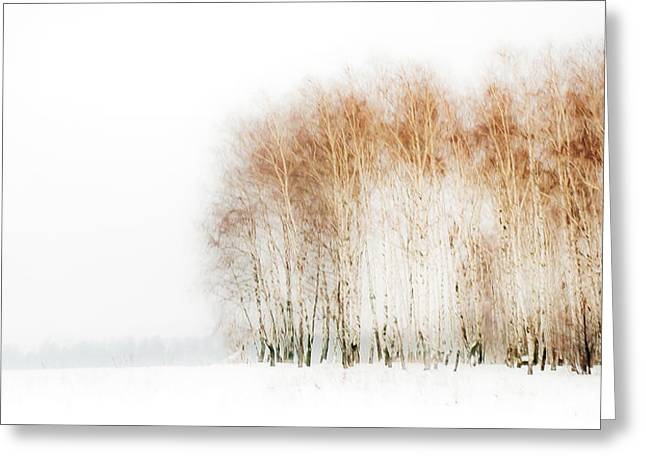 Winter Painting Iv. Aquarel By Nature Greeting Card by Jenny Rainbow