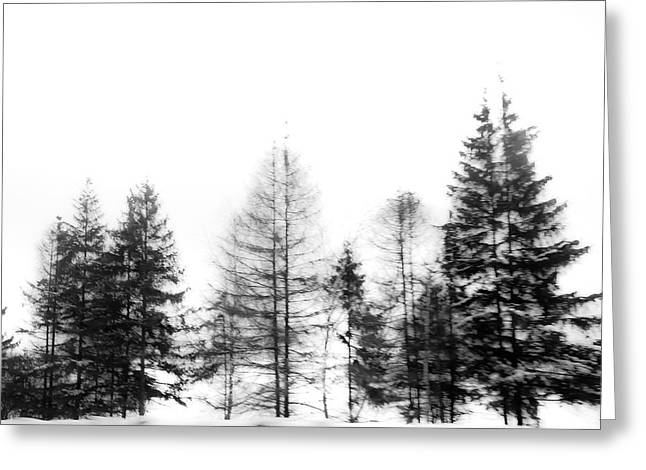 Winter Painting Iv. Ink Drawing By Nature Greeting Card by Jenny Rainbow