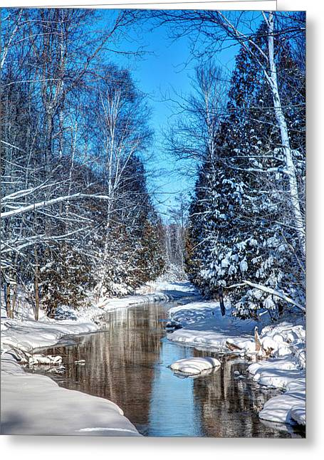Winter Perfection Greeting Card by Gary Gish