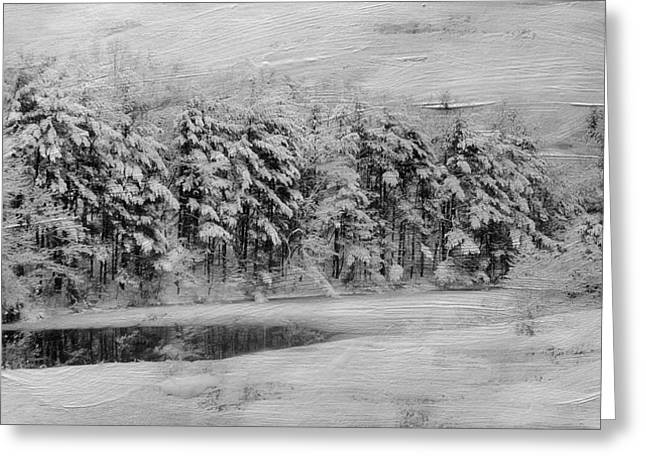 Winter Pond Greeting Card by Kathy Jennings