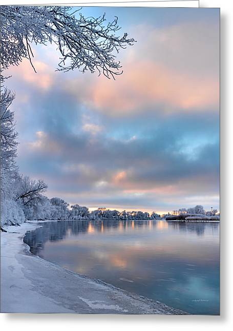 Winter Quiet Greeting Card by Leland D Howard