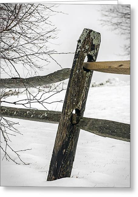 Winter Rail Fence Greeting Card