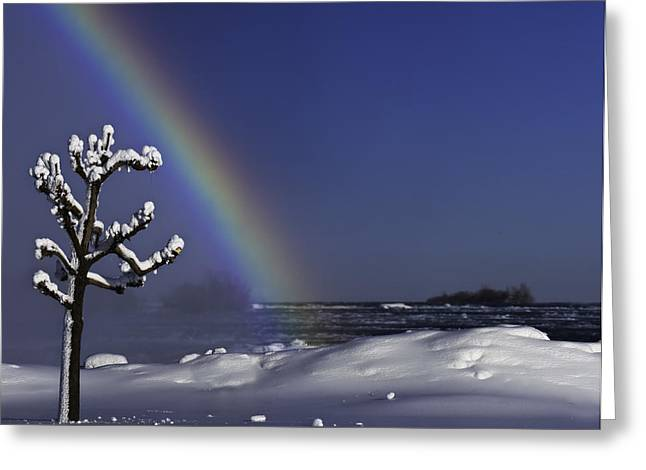Winter Rainbow At Niagara Falls Greeting Card by Peter v Quenter