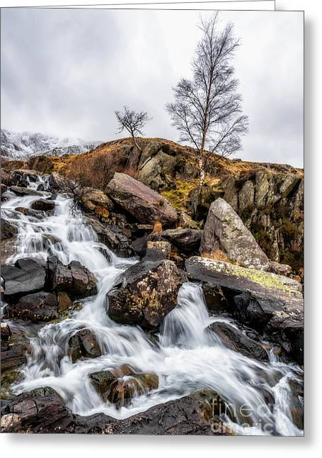 Winter Rapids V2 Greeting Card by Adrian Evans