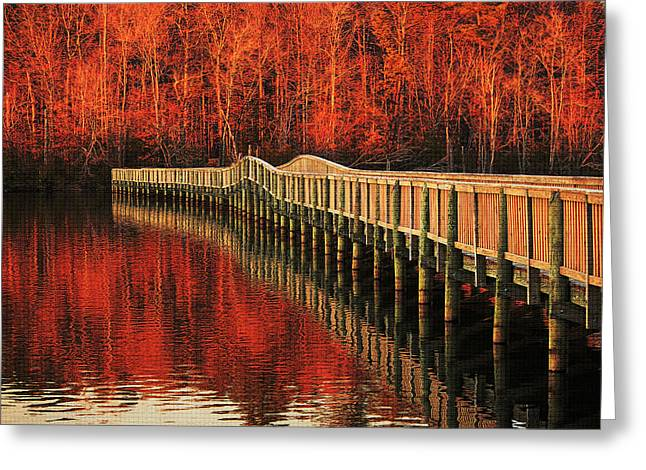 Winter Reds Greeting Card