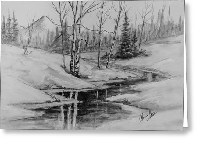 Winter Reflection Greeting Card by C Steele