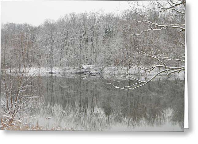 Winter Reflections 2 Greeting Card by Mark Minier