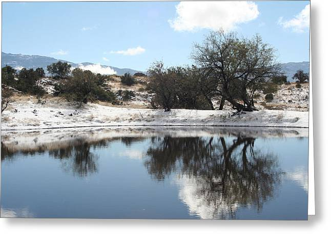 Winter Reflections Greeting Card by David S Reynolds