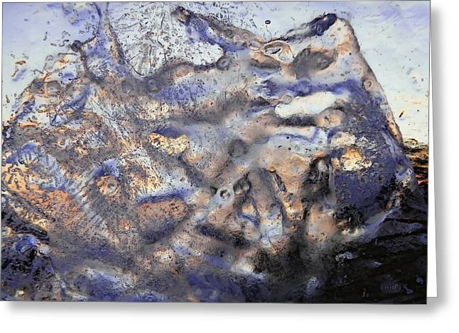 Winter Remains Greeting Card