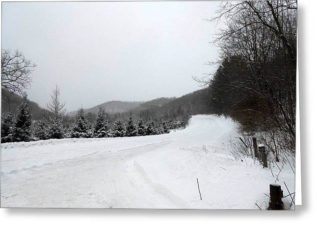 Winter Road Greeting Card by Dina  Stillwell