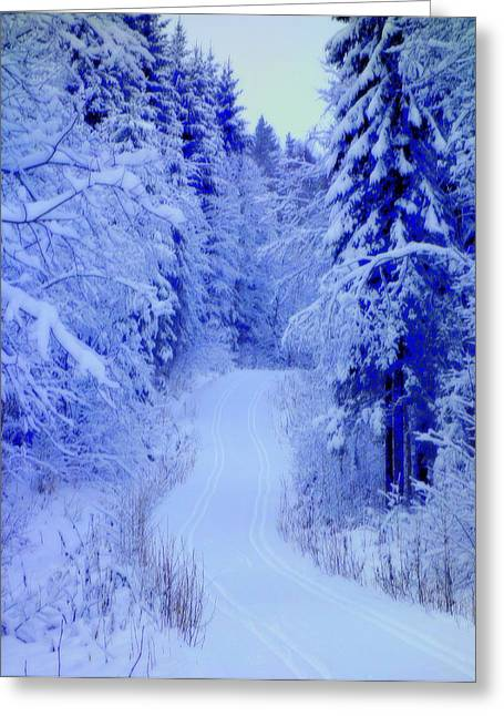 Mental Process Greeting Cards - Winter Road Greeting Card by Hilde Widerberg