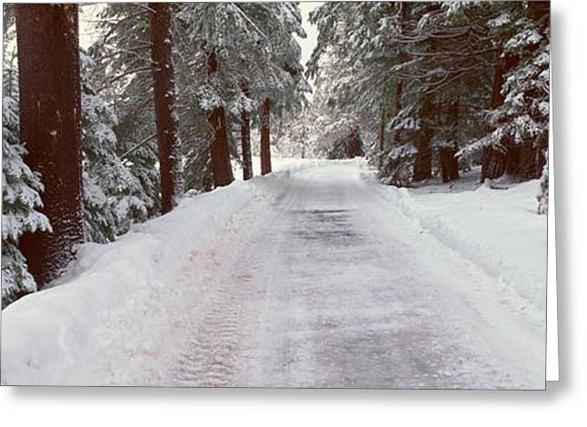 Winter Road Near Lake Tahoe, California Greeting Card