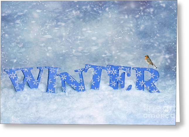 Winter Robin Greeting Card by Amanda Elwell